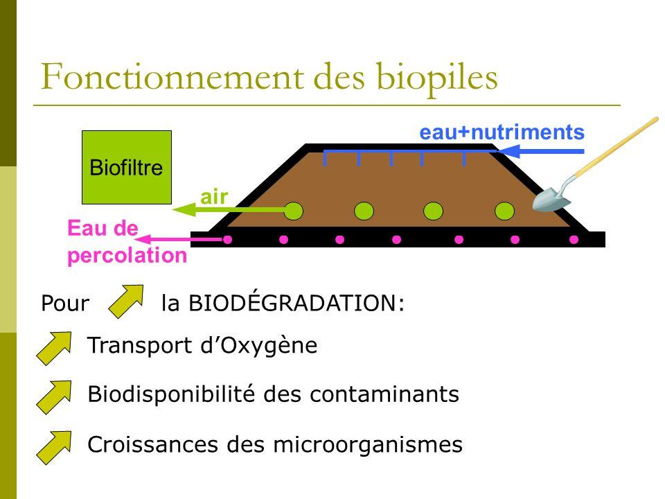 Fonctionnement des biopiles