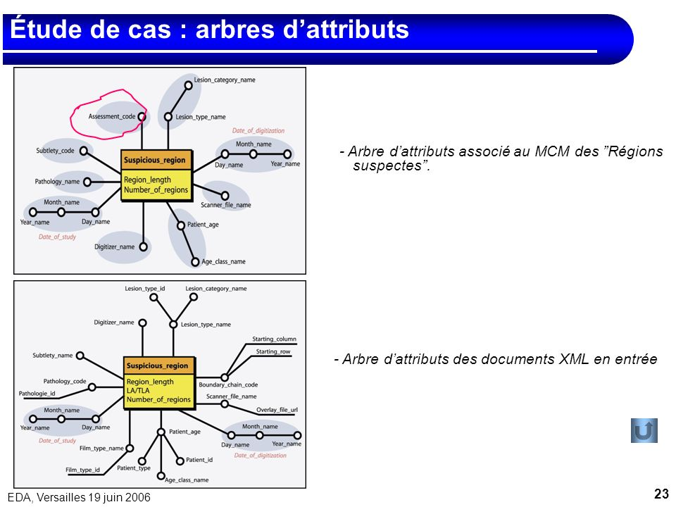Étude de cas : arbres d'attributs