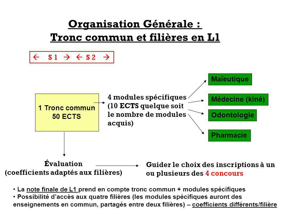 Organisation Générale : Tronc commun et filières en L1