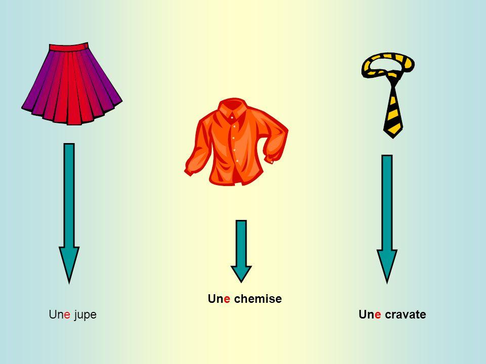 Une chemise Une jupe Une cravate