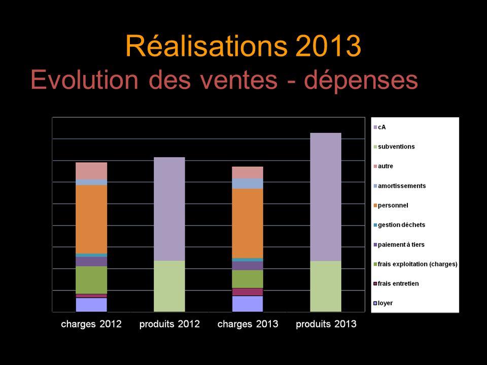 Réalisations 2013 Evolution des ventes - dépenses 12