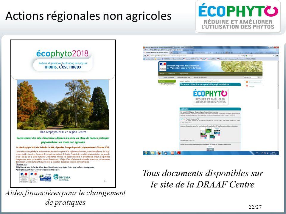 Actions régionales non agricoles