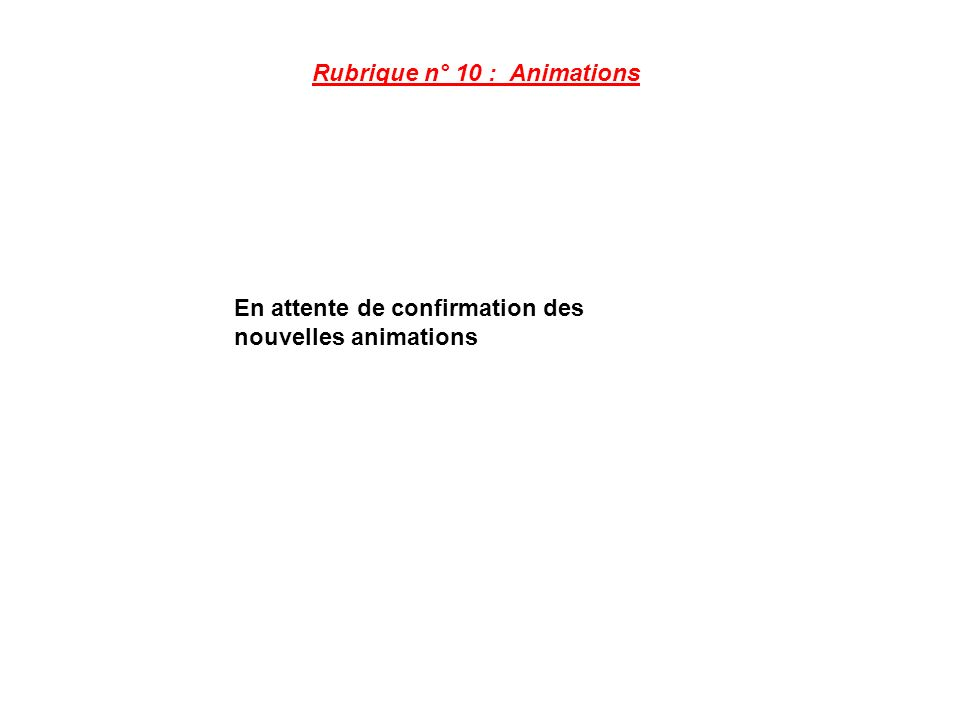 Rubrique n° 10 : Animations