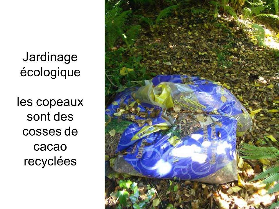 Jardinage écologique les copeaux sont des cosses de cacao recyclées