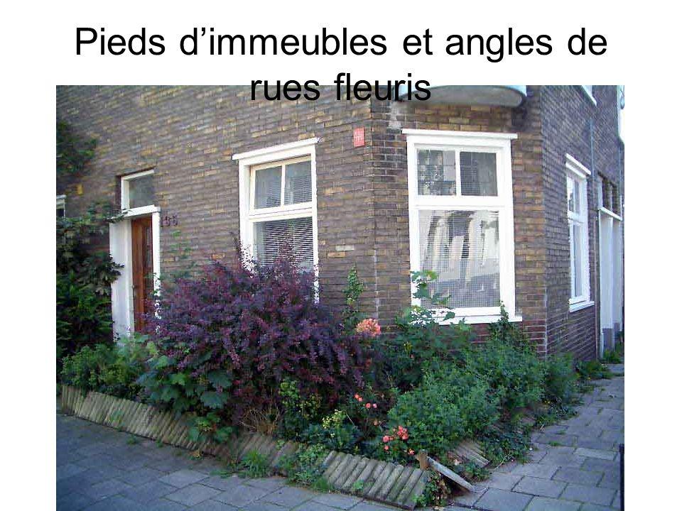 Pieds d'immeubles et angles de rues fleuris