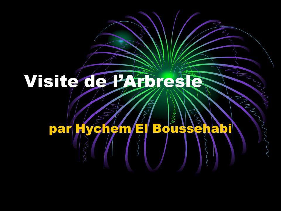 par Hychem El Boussehabi