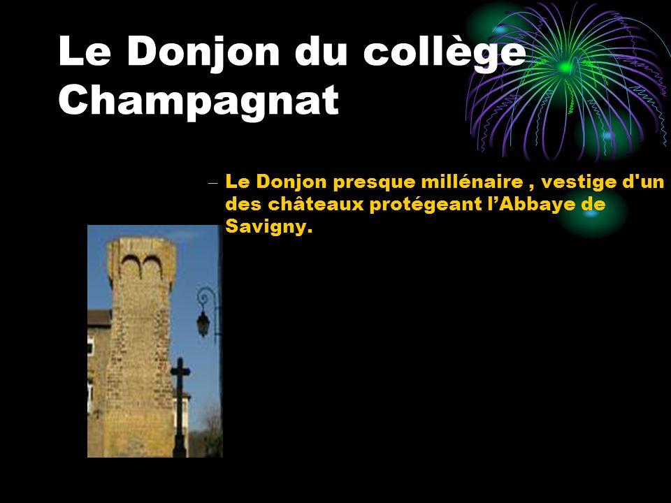 Le Donjon du collège Champagnat