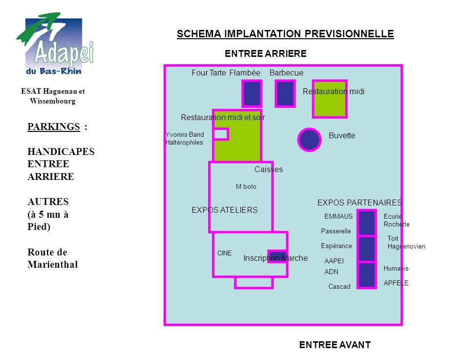 SCHEMA IMPLANTATION PREVISIONNELLE ESAT Haguenau et Wissembourg