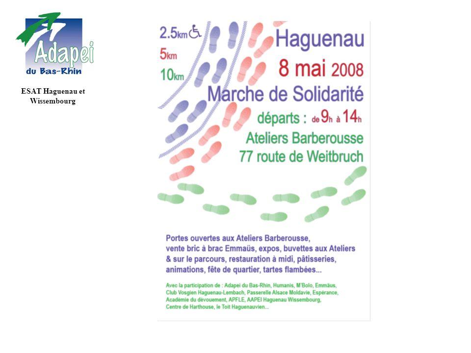 ESAT Haguenau et Wissembourg