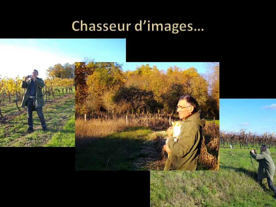 Chasseur d'images…