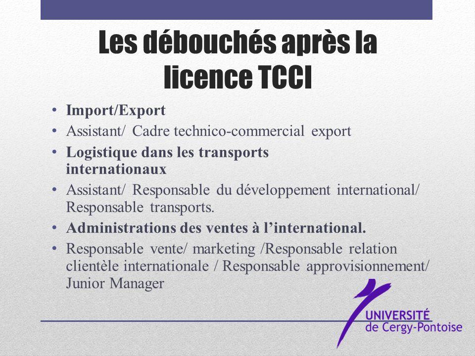 Les débouchés après la licence TCCI
