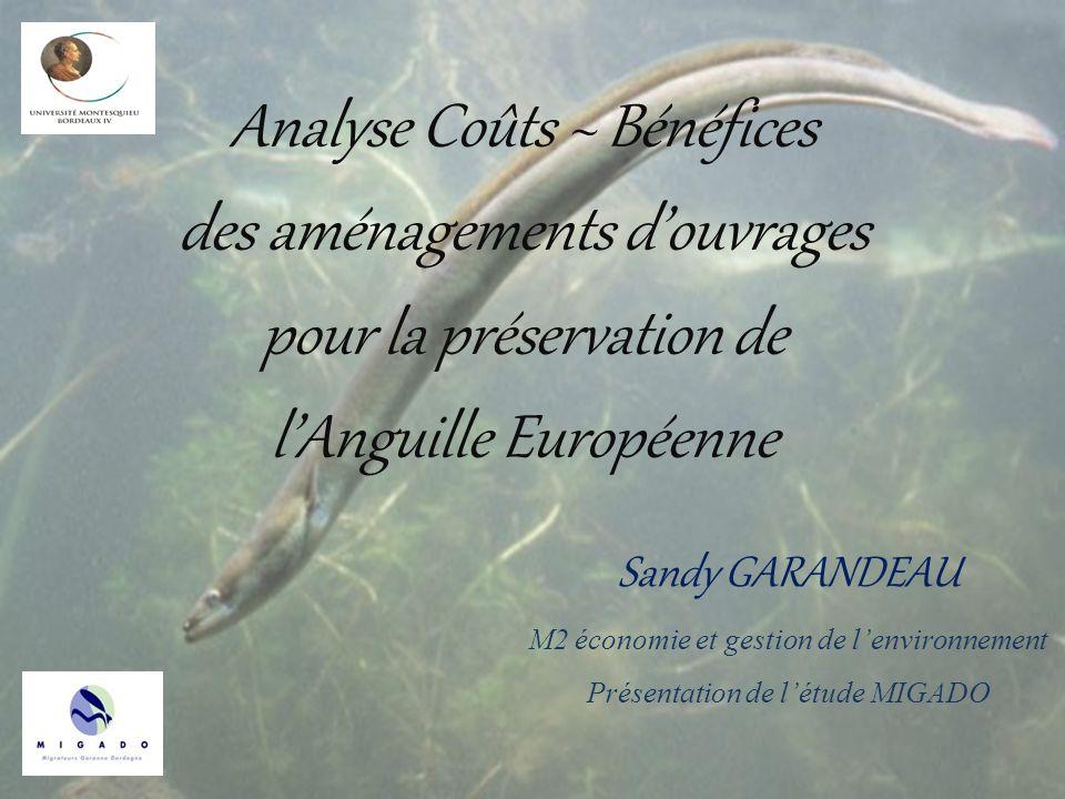 Analyse Coûts ~ Bénéfices des aménagements d'ouvrages pour la préservation de l'Anguille Européenne