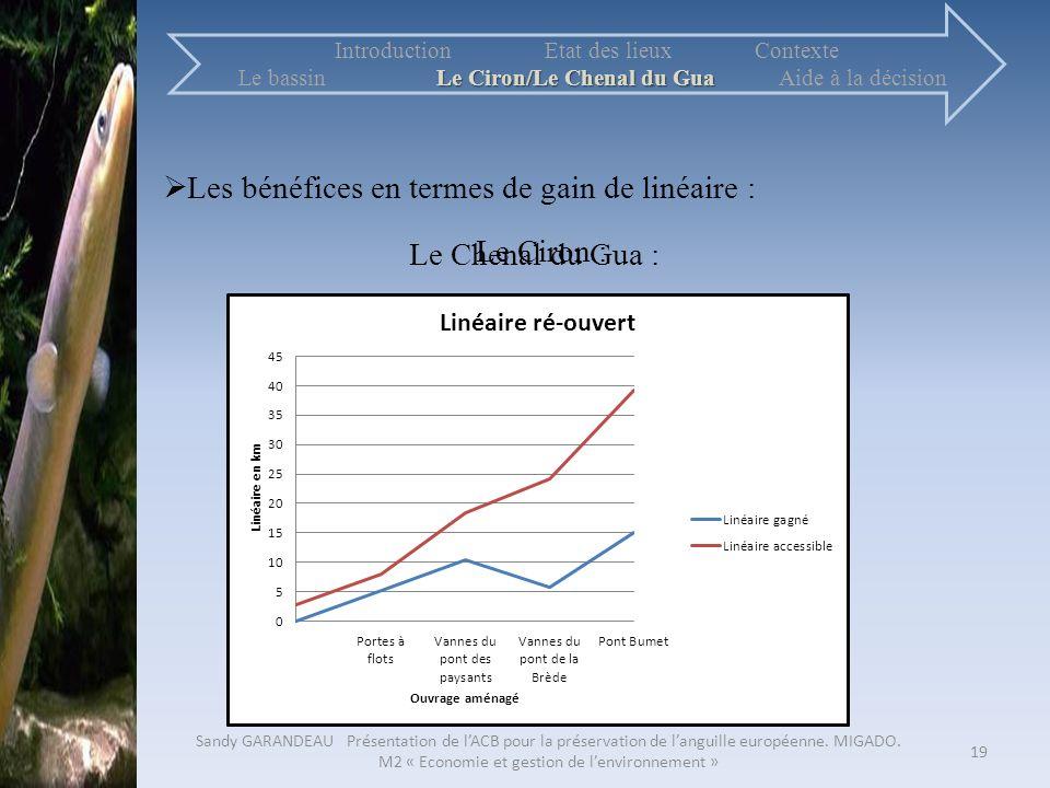 Les bénéfices en termes de gain de linéaire : Le Ciron :