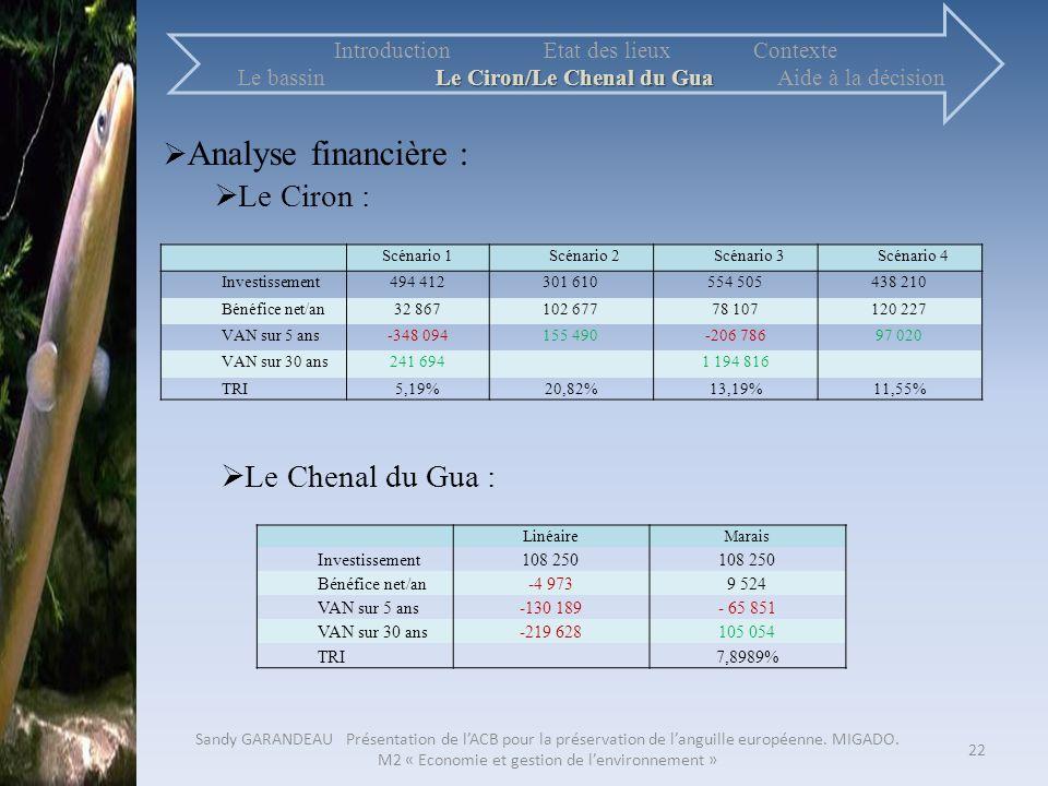 Analyse financière : Le Ciron : Le Chenal du Gua :