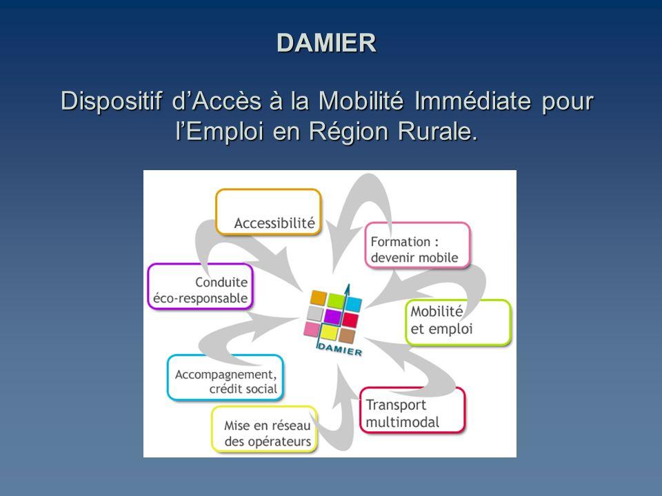 DAMIER Dispositif d'Accès à la Mobilité Immédiate pour l'Emploi en Région Rurale.