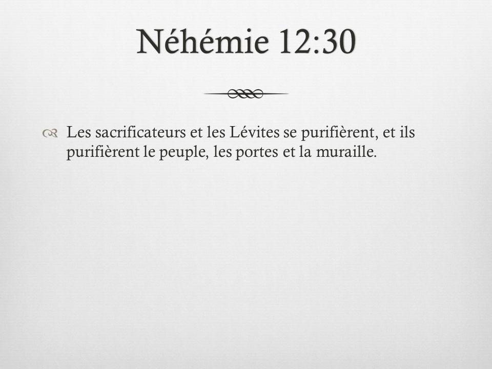 Néhémie 12:30 Les sacrificateurs et les Lévites se purifièrent, et ils purifièrent le peuple, les portes et la muraille.