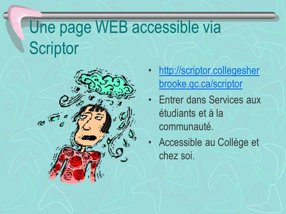 Une page WEB accessible via Scriptor