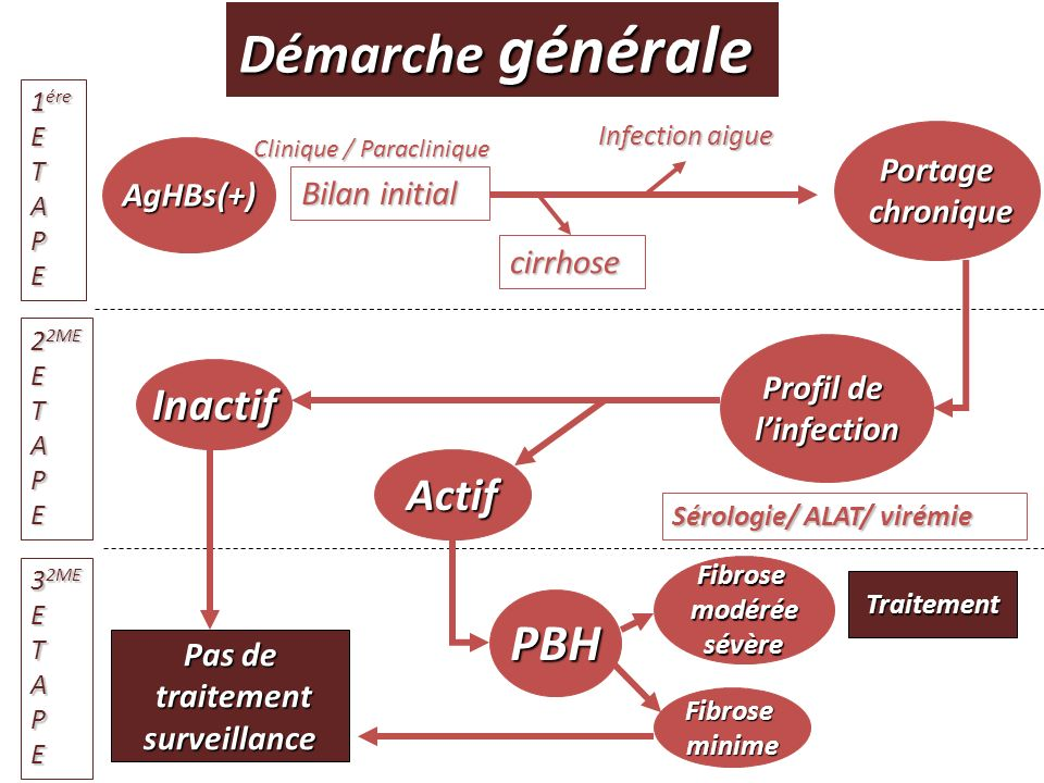 Démarche générale PBH Inactif Actif AgHBs(+) Bilan initial cirrhose