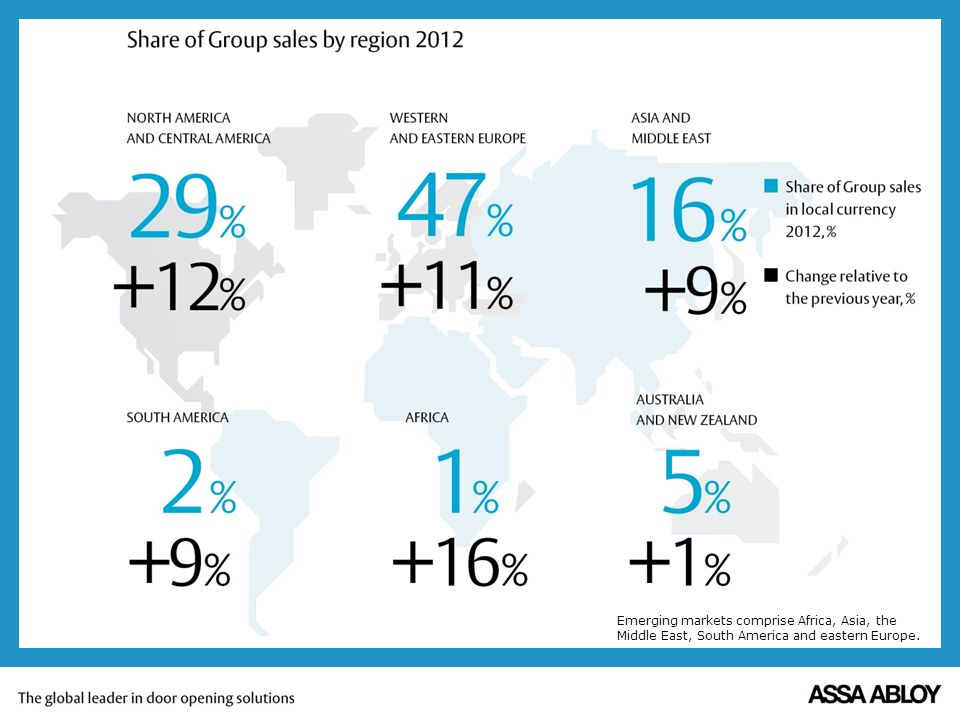 Share of Group sales by region 2010