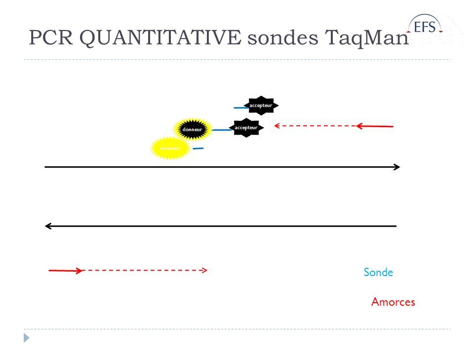 PCR QUANTITATIVE sondes TaqMan