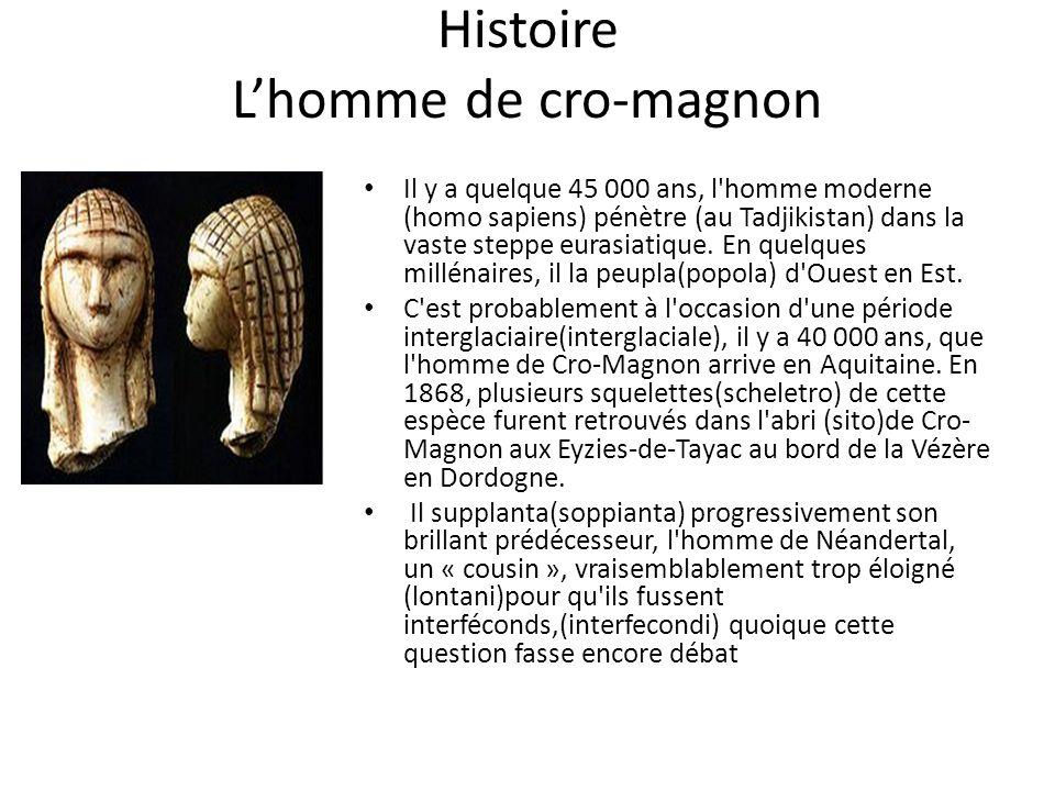 Histoire L'homme de cro-magnon