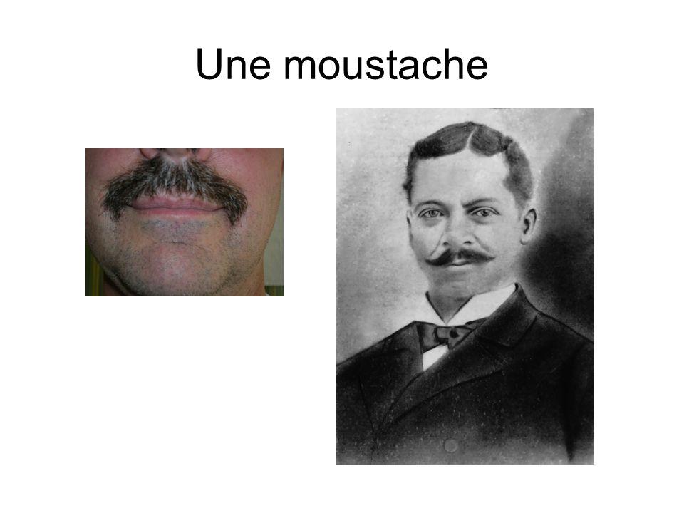 Une moustache