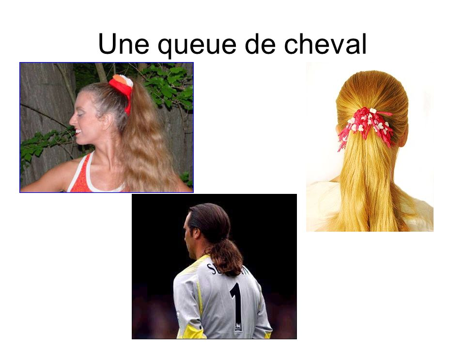 Une queue de cheval