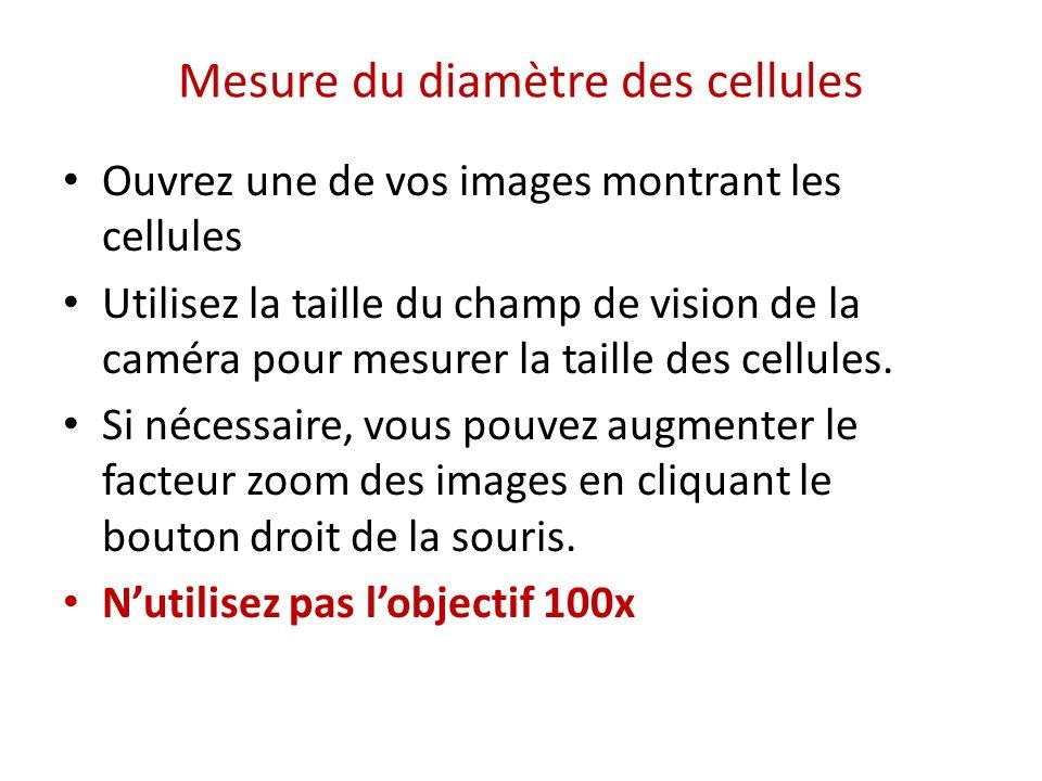 Mesure du diamètre des cellules