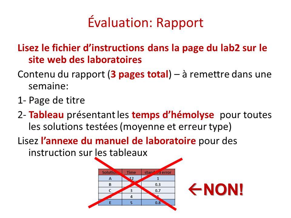 NON! Évaluation: Rapport