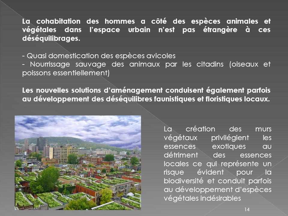 La cohabitation des hommes a côté des espèces animales et végétales dans l'espace urbain n'est pas étrangère à ces déséquilibrages.