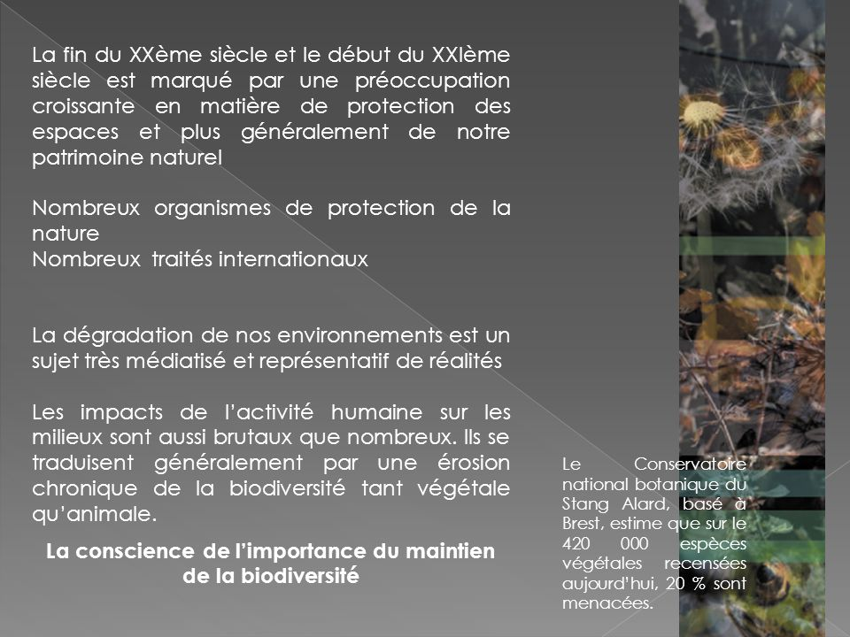 La conscience de l'importance du maintien de la biodiversité