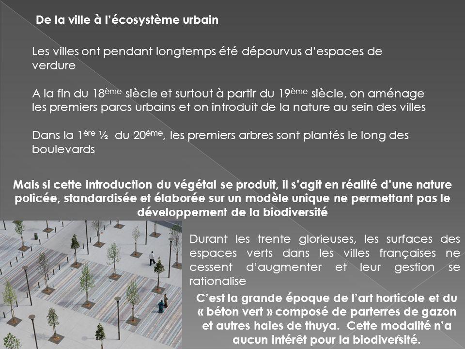 De la ville à l'écosystème urbain
