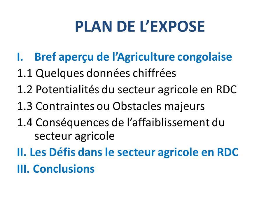 PLAN DE L'EXPOSE Bref aperçu de l'Agriculture congolaise