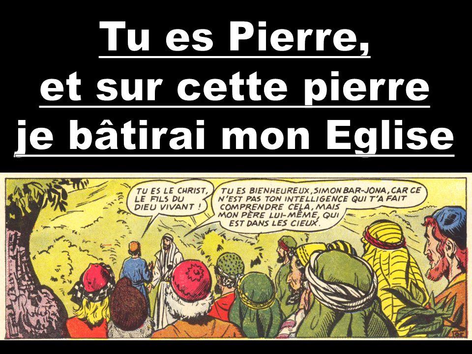 Tu es Pierre, et sur cette pierre je bâtirai mon Eglise