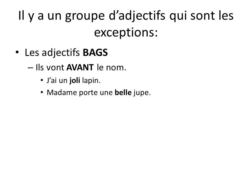 Il y a un groupe d'adjectifs qui sont les exceptions: