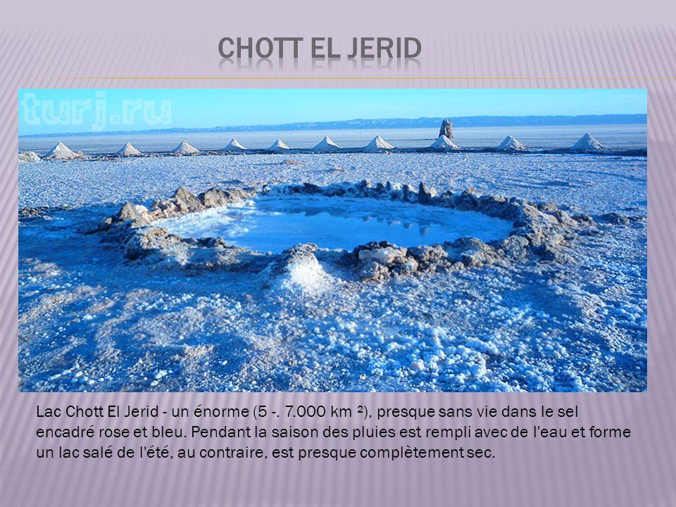 Chott El Jerid