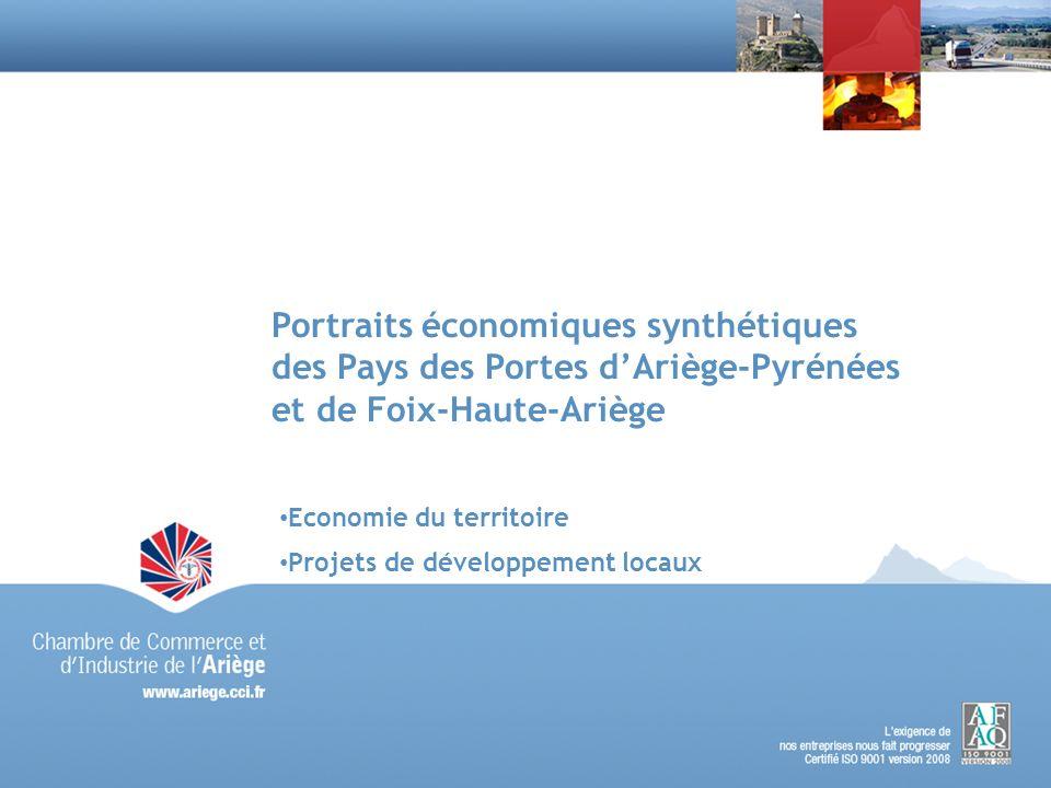 Portraits économiques synthétiques des Pays des Portes d'Ariège-Pyrénées et de Foix-Haute-Ariège