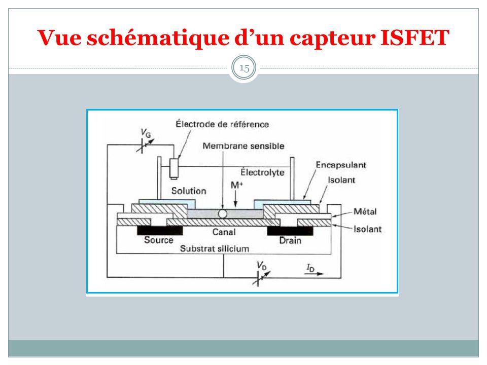 Vue schématique d'un capteur ISFET