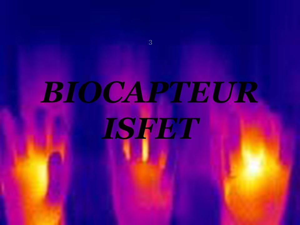 BIOCAPTEUR ISFET