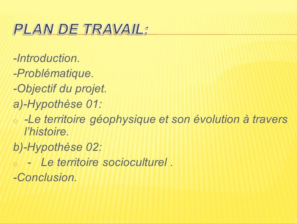 Plan de travail: -Introduction. -Problématique. -Objectif du projet.