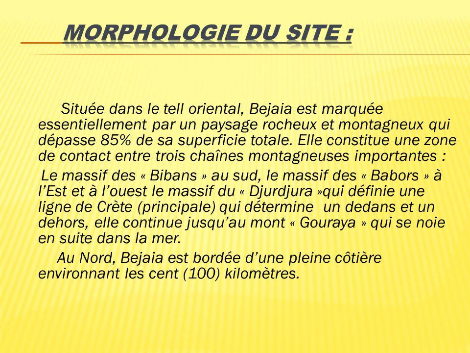 MORPHOLOGIE DU SITE :