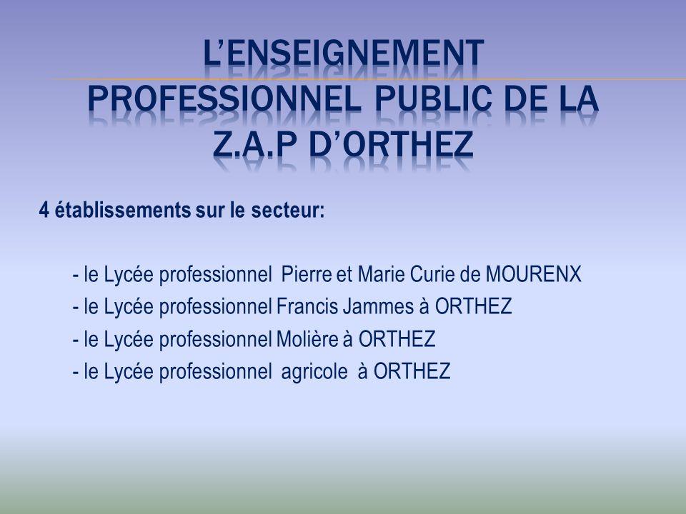 L'ENSEIGNEMENT PROFESSIONNEL PUBLIC DE LA Z.A.P D'ORTHEZ
