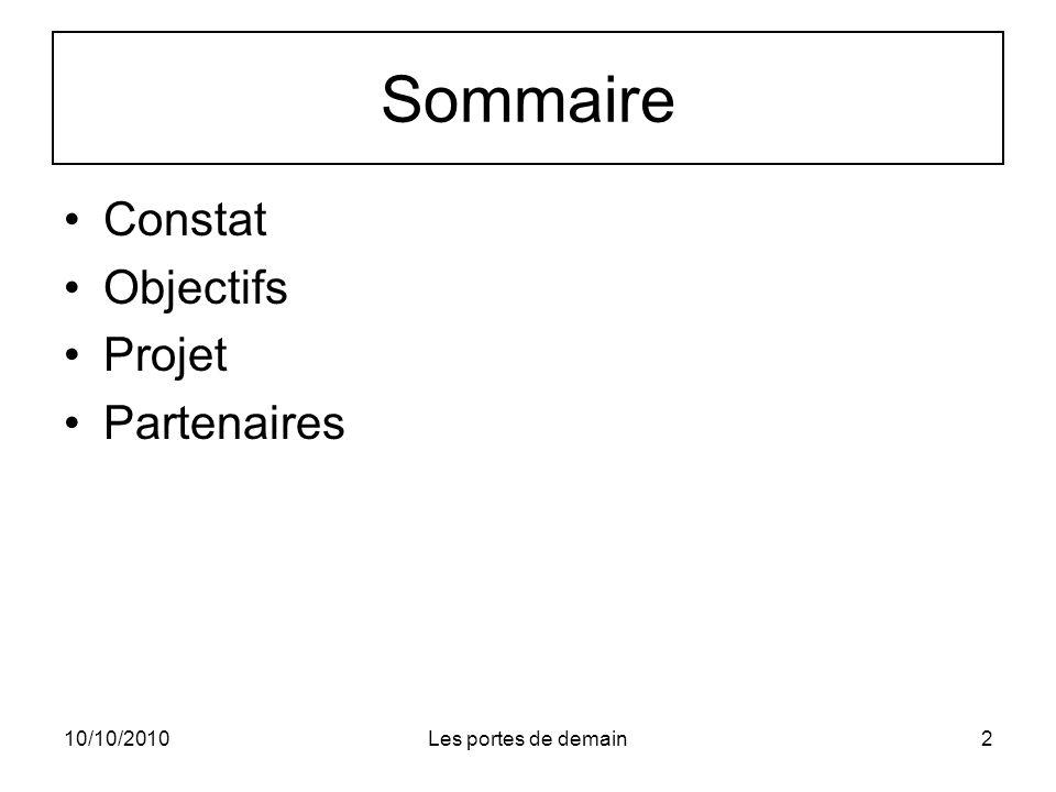 Sommaire Constat Objectifs Projet Partenaires 10/10/2010