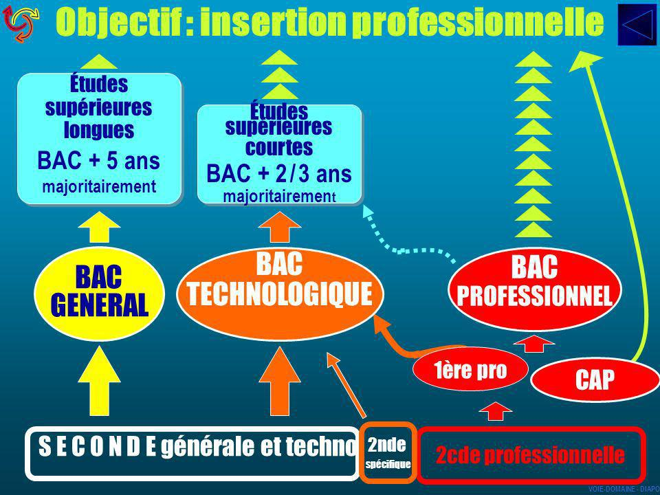Objectif : insertion professionnelle