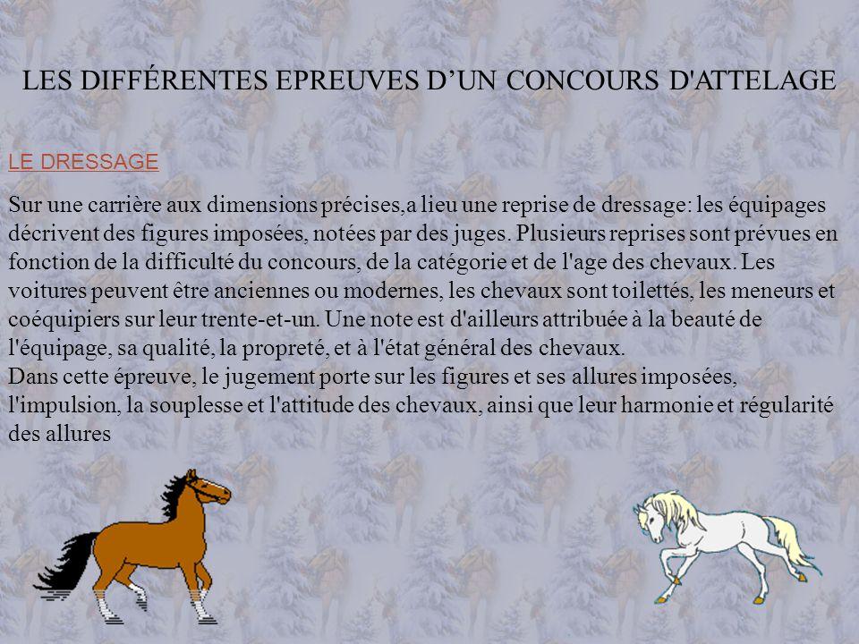 LES DIFFÉRENTES EPREUVES D'UN CONCOURS D ATTELAGE