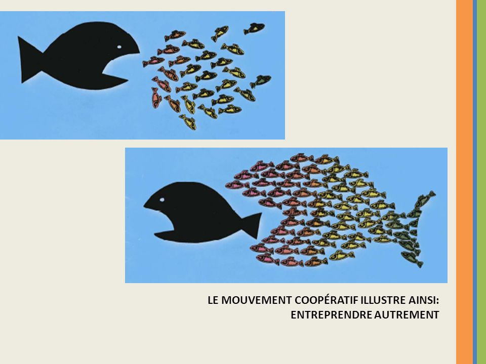 LE MOUVEMENT COOPÉRATIF ILLUSTRE AINSI: