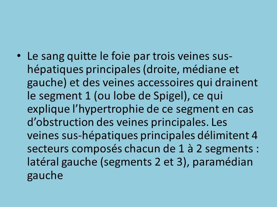 Le sang quitte le foie par trois veines sus-hépatiques principales (droite, médiane et gauche) et des veines accessoires qui drainent le segment 1 (ou lobe de Spigel), ce qui explique l'hypertrophie de ce segment en cas d'obstruction des veines principales.