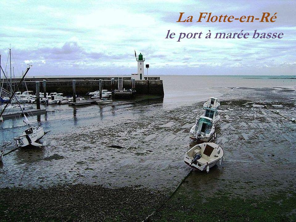 La Flotte-en-Ré le port à marée basse