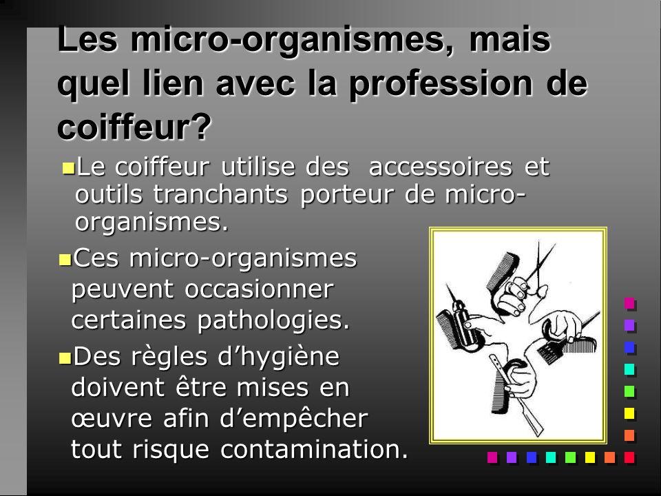 Les micro-organismes, mais quel lien avec la profession de coiffeur