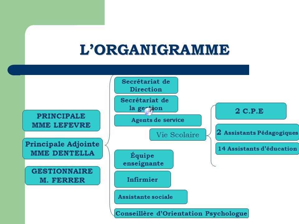 L'ORGANIGRAMME 2 C.P.E PRINCIPALE MME LEFEVRE